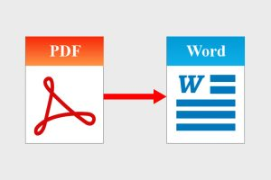 PDF to MS-Word